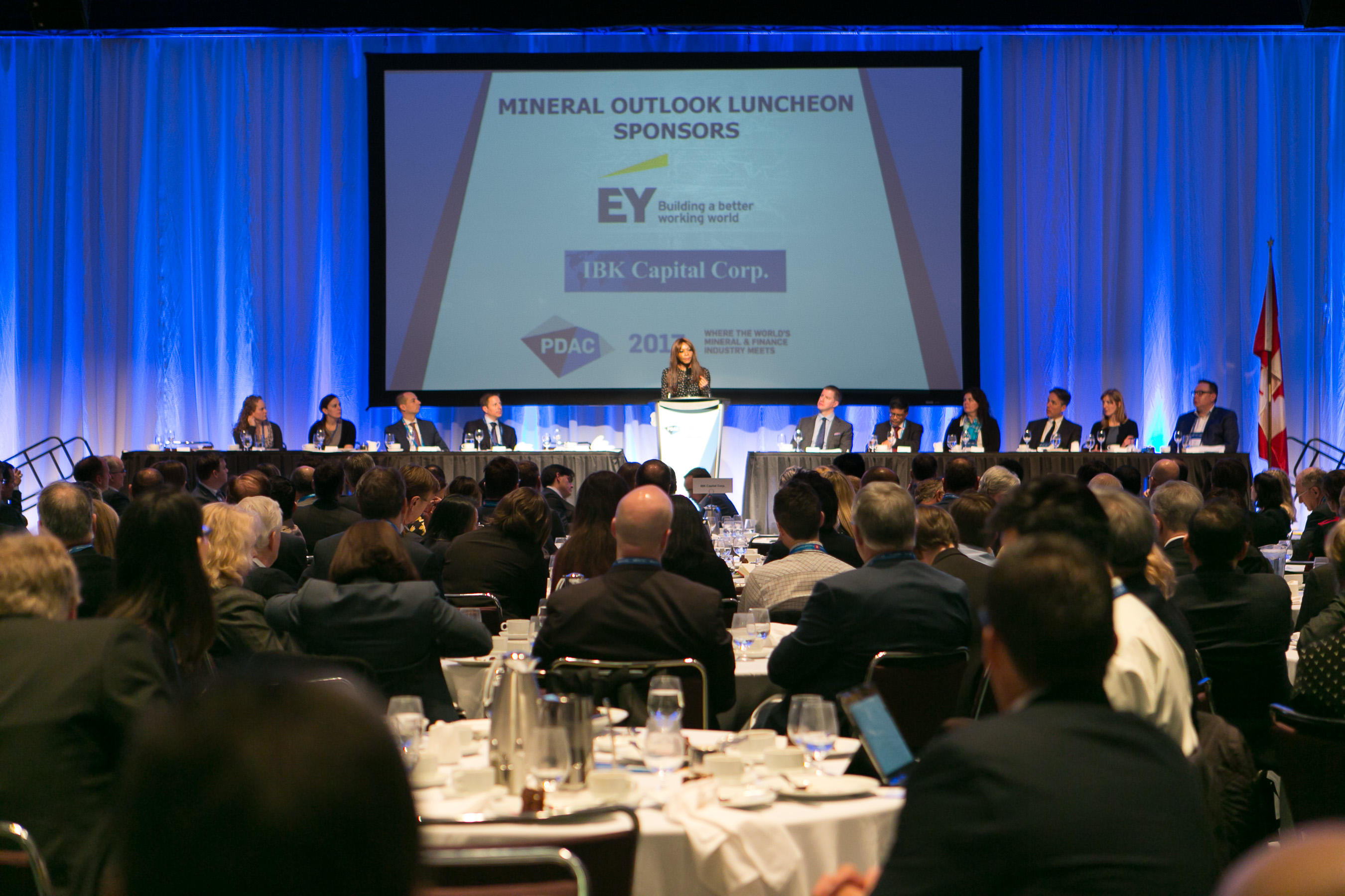 Mineral Outlook Luncheon, Guest Speaker, Dambisa Moyo