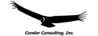 Condor Consulting
